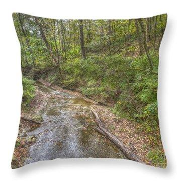 River Flowing Through Pine Quarry Park Throw Pillow