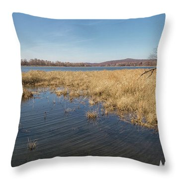 River Grass Throw Pillow