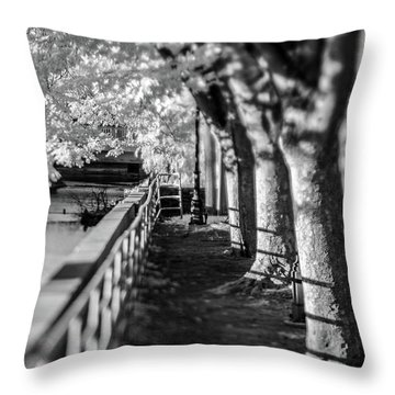 River Lines Throw Pillow