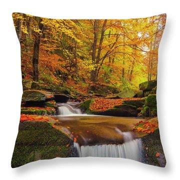 River Rapid Throw Pillow