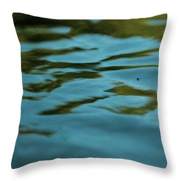River Ripples Throw Pillow