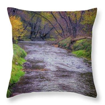 River Running Through Throw Pillow