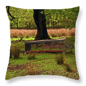 Rivington. Terraced Gardens. Feeding Trough. Throw Pillow