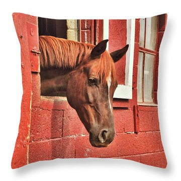 Roan Red Throw Pillow