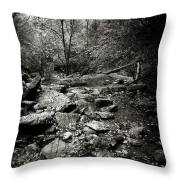 Rock Glen Throw Pillow