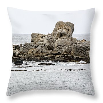 Rock Sculpture By Mother Nature Throw Pillow
