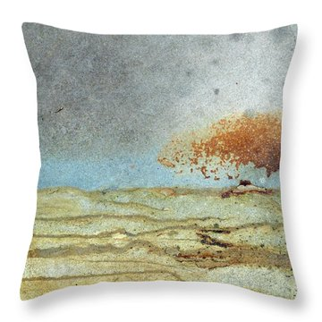 Rock Stain Abstract 1 Throw Pillow