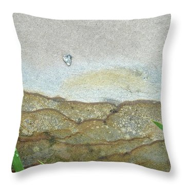 Rock Stain Abstract 5 Throw Pillow