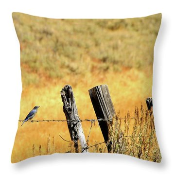 Rocky Mountain Blue Bird Throw Pillow