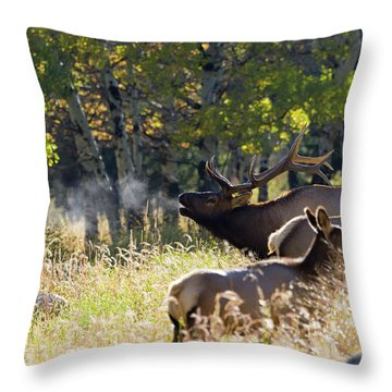 Throw Pillow featuring the photograph Rocky Mountain Bull Elk Bugeling by Nathan Bush