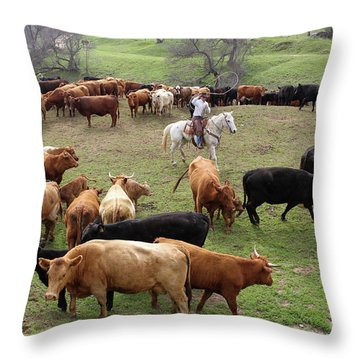 Rodear Branding Throw Pillow