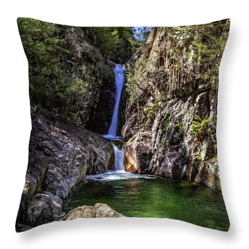 Rollalson Falls Throw Pillow