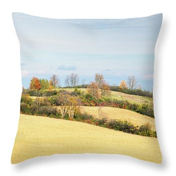 Rolling Hills In Fall Throw Pillow