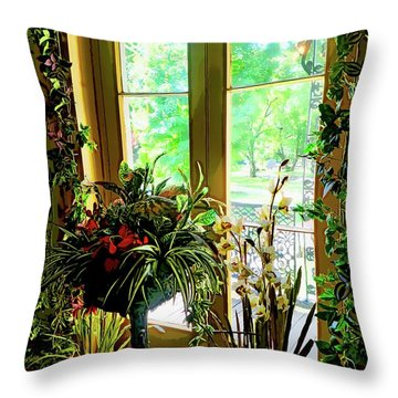 Throw Pillow featuring the photograph Room With A View by Joan Reese