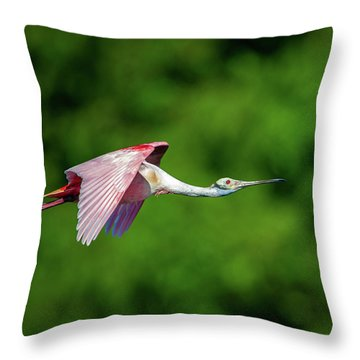 Throw Pillow featuring the photograph Roseate Spoonbill by Jeff Phillippi