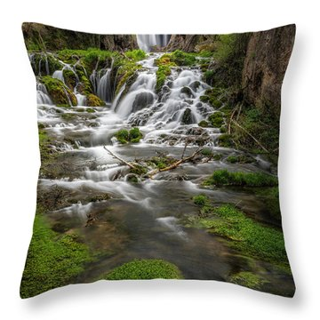 Roughlock Falls Throw Pillow