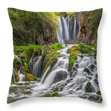 Roughlock Falls II Throw Pillow