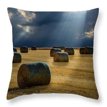 Round Bales Throw Pillow