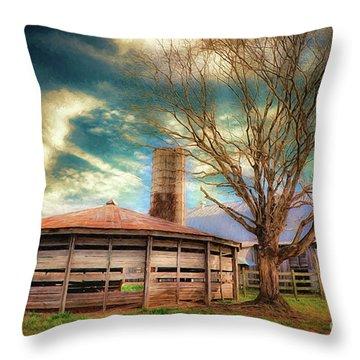 Round Barn Throw Pillow