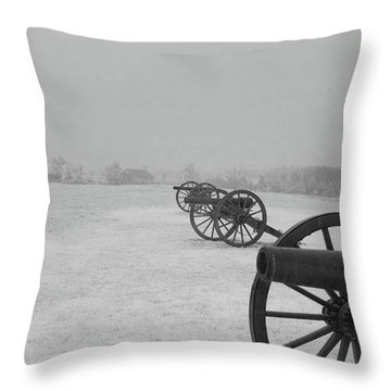 Row Of Cannon Throw Pillow