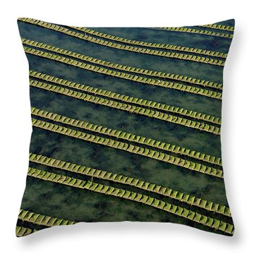 Rows Of Racks Used In Oyster Farming At High Tide, France Throw Pillow