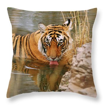 Out Of Focus Throw Pillows