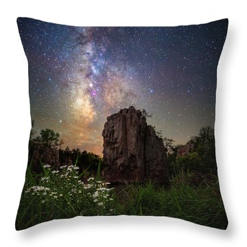 Throw Pillow featuring the photograph Royalty  by Aaron J Groen