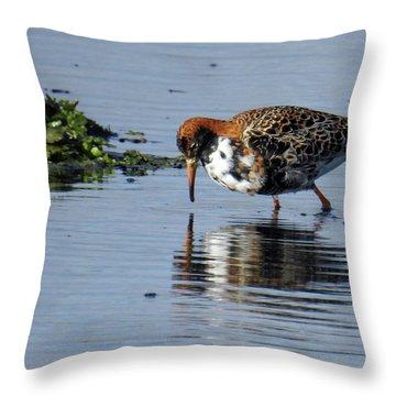 Ruff 40407 Throw Pillow