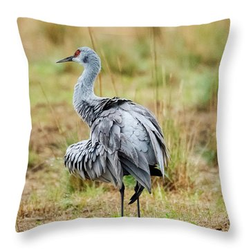 Ruffled Crane Throw Pillow