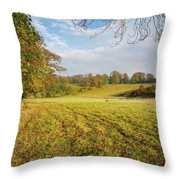 Rural Easby Throw Pillow