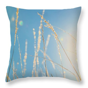 Throw Pillow featuring the photograph Rural Sunflare by Dan Sproul
