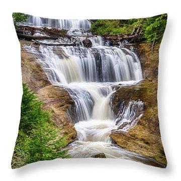 Sable Falls Throw Pillow