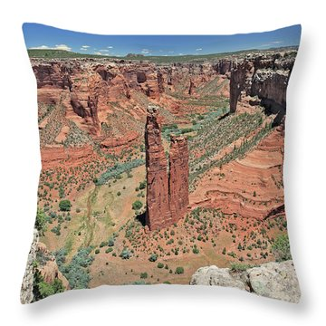 Sacred Spider Rock Throw Pillow