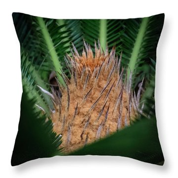 Sago Palm Throw Pillow