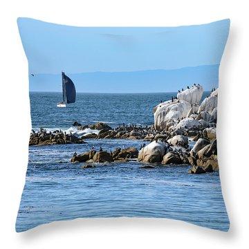 Sailboat At Bird Rock Throw Pillow