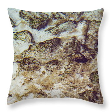 Sand 3 Rivers Throw Pillow