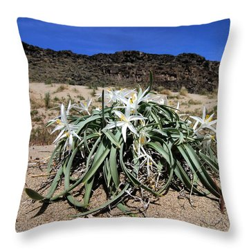 Star Lilys Its Springtime In The Rockys Throw Pillow