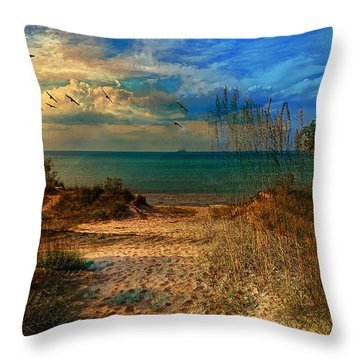 Sand Track To The Ocean At Dusk Throw Pillow