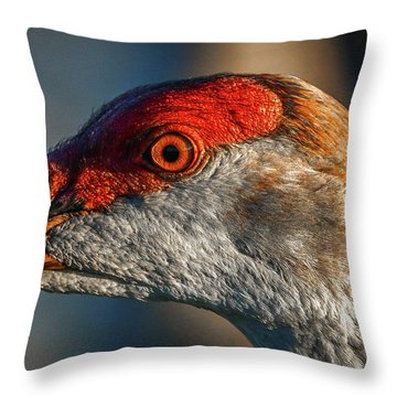 Throw Pillow featuring the photograph Sandhill Close Up Portrait by Tom Claud
