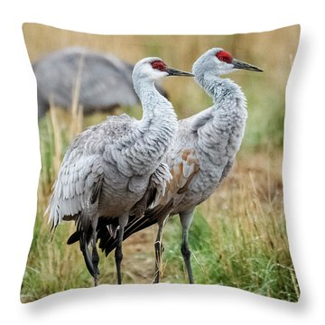 Sandhill Crane Pair Throw Pillow