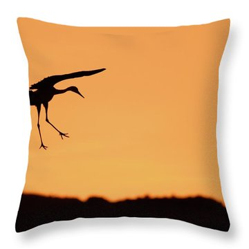 Sandhill Crane Silhouette Throw Pillow