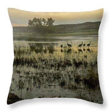 Sandhill Serenity Throw Pillow