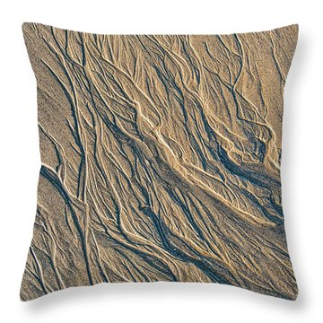 Throw Pillow featuring the photograph Sandmotion by Tim Gainey