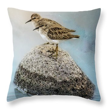 Sandpipers On A Rock Throw Pillow