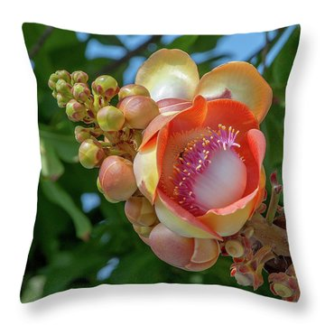 Throw Pillow featuring the photograph Sara Tree Or Cannonball Tree Flower And Buds Dthn0264 by Gerry Gantt