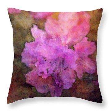Saturation 9041 Idp_2 Throw Pillow