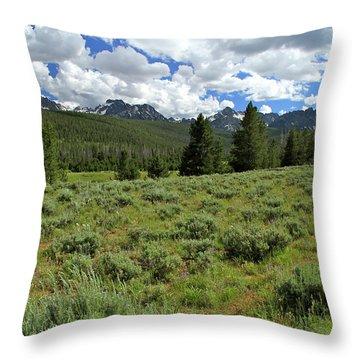Sawtooth Range Crooked Creek Throw Pillow