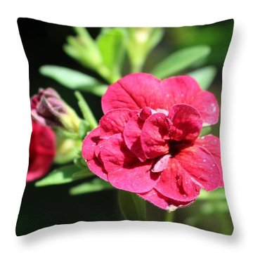 Scarlet Geranium In Cape May Throw Pillow