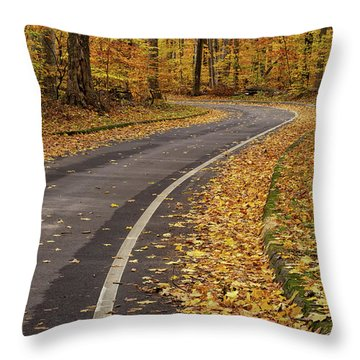 Scenic Drive 3 Throw Pillow