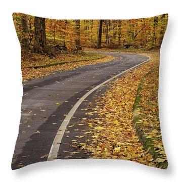 Scenic Drive 3 Throw Pillow